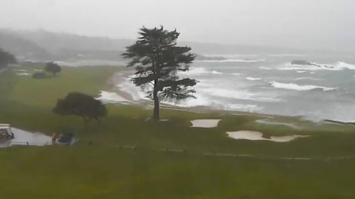 Storm Topples Tree in 18th Fairway at Pebble Beach