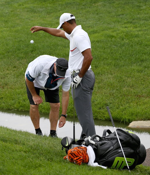 Fascination with Tiger Woods Continues, Even As He Implodes, Shots 85…